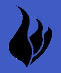 GalesFireSafety.com Logo